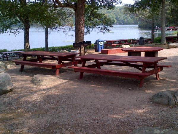 Round table area with grill and picnic tables
